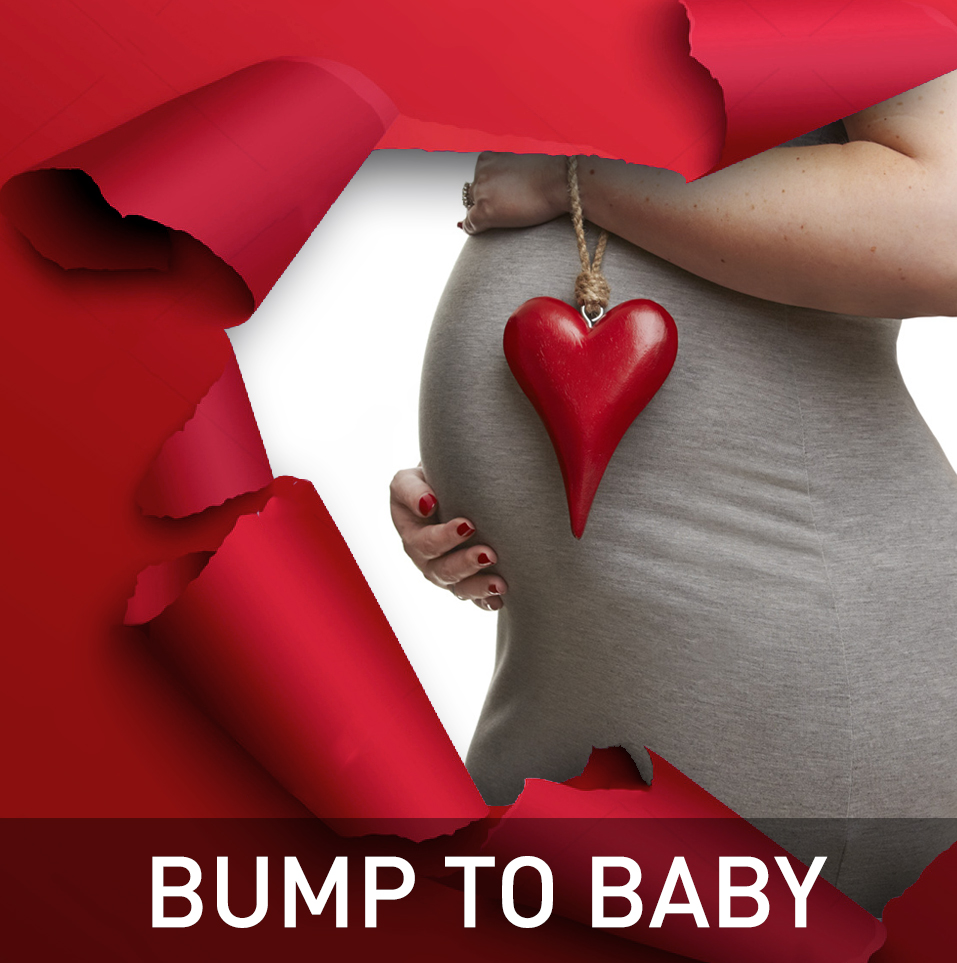 BUMP TO BABY PHOTOGRAPHY EXPERIENCE Logo
